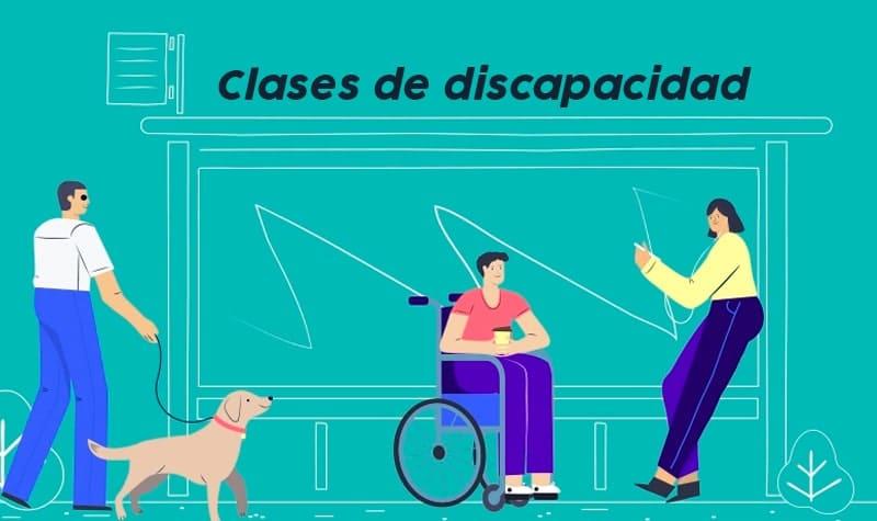 clases de discapacidad